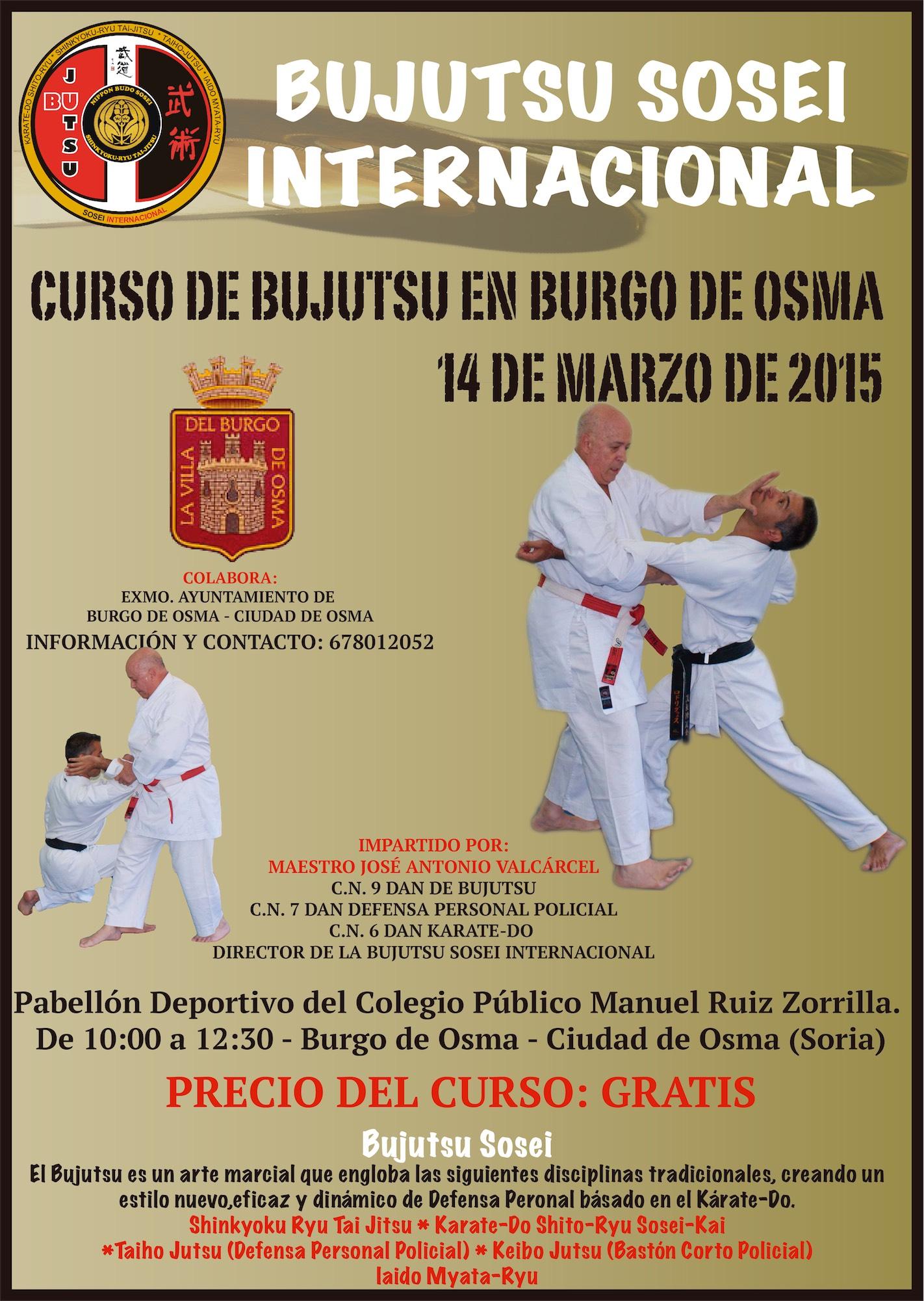 BURGO DE OSMA 3