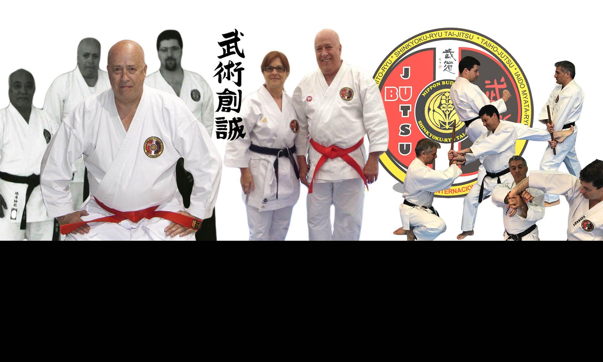 Bujutsu Sosei Internacional